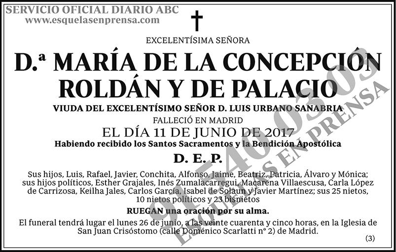 María de la Concepción Roldán y de Palacio